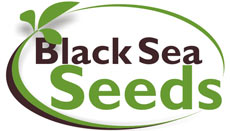 Black Sea Seeds SRL